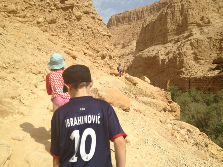 Exploring Ein Gedi desert and the Dead Sea (The lowest point on Earth)